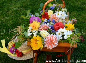 2399S-Dahlias Bouquet and Straw Hat