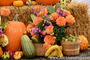2528-Dahlia Bouquet and Pumpkins