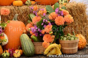 2528-Dahlia Bouquet and Pumpkins