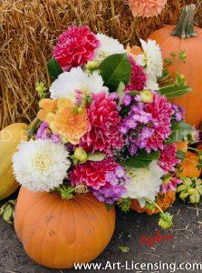 2543S-Dahlias Bouquet and Pumpkins