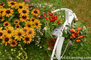 9578-Red Peppers and Rudbeckias